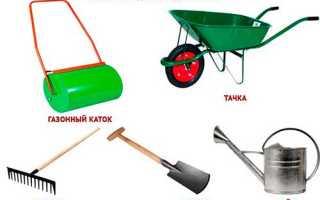 Как сажать газонную траву семенами