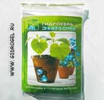Гидрогель для комнатных растений как использовать