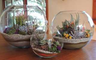 Цветы в аквариуме без воды