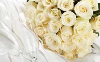 Белые розы значение подарка