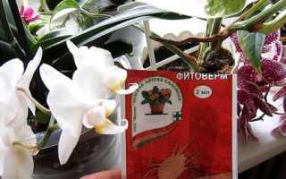 Как разводить фитоверм для орхидей