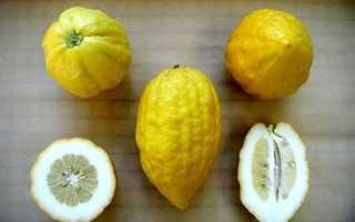 Разновидности цитрусовых